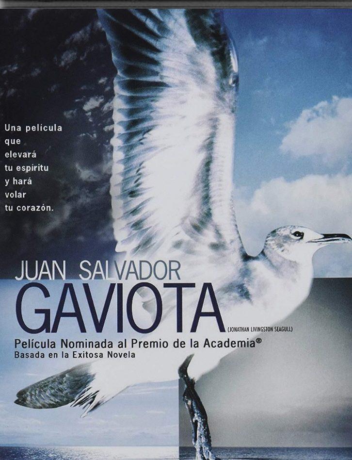 Juan Salvador Gaviota Características Análisis Personajes