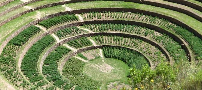 Las-Ruinas-Circulares-11