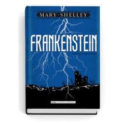 Resumen de Frankenstein (Libro) de Mary Shelley